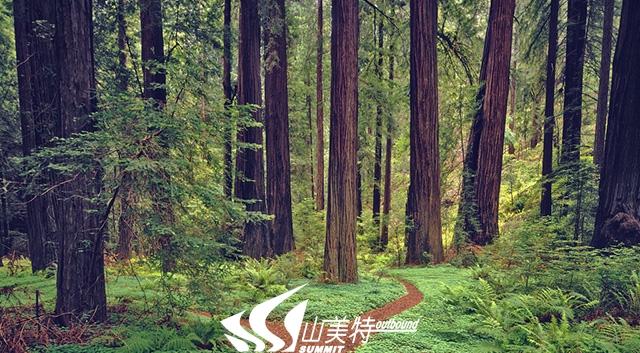 VCG41200496968-001.jpg